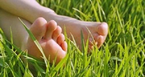 Mersul cu picioarele goale prin iarbă