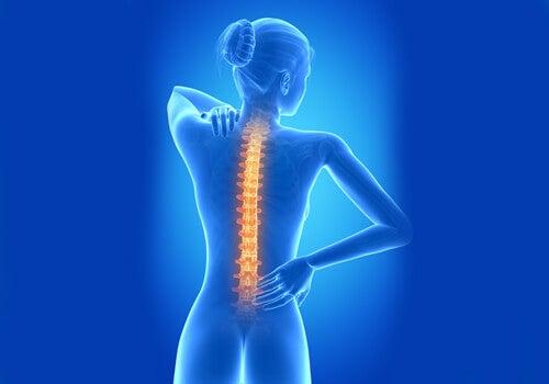Tipuri de dureri de spate