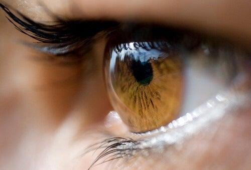 Culoare-ochilor