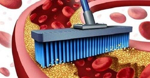 10 alimente care curăță venele și arterele
