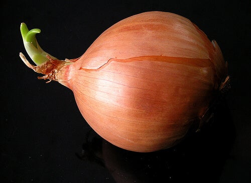 Ceapa pe lista de legume pentru slăbire