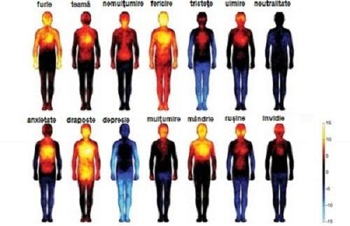 Emoțiile ne afectează trupul