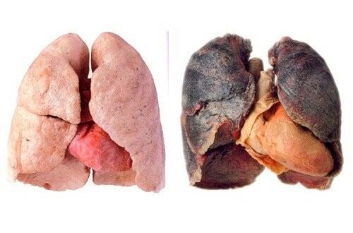 Sfaturi pentru plămâni mai sănătoși