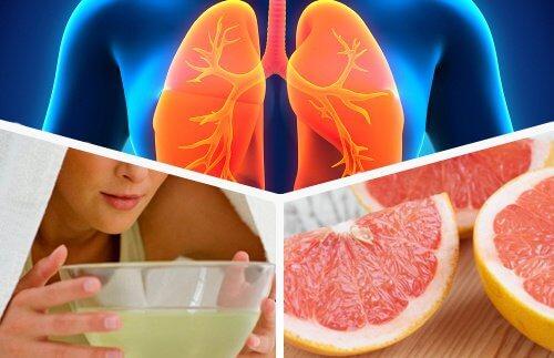Plamani, fructe, inhalatii