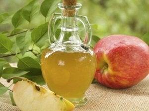 tratarea viermilor cu oțet de mere