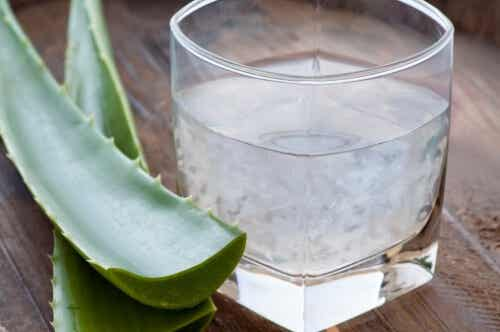 Detoxifierea sângelui cu 6 plante medicinale