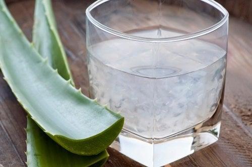 Aloe vera pentru inflamația esofagului