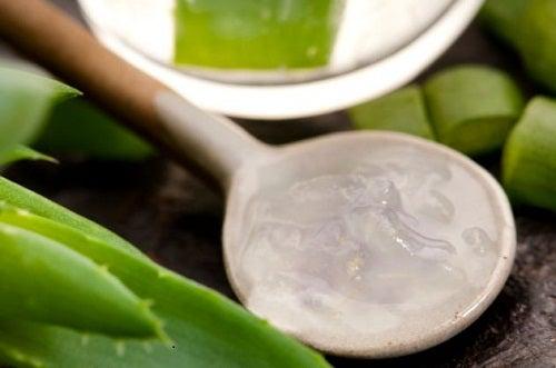 Aloe vera detoxifică sângele