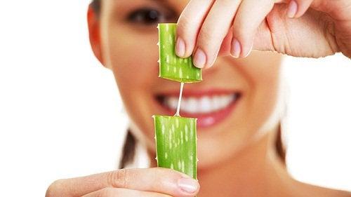 Beneficiile clorofilei prezente în plantele verzi