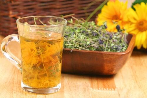 Ceaiul de isop detoxifică sângele