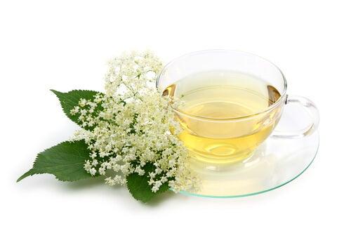Ceaiul de soc detoxică sângele