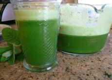 Clorofila: suc verde