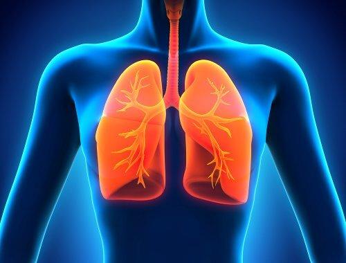 Detoxifierea plămânilor cu sucuri naturale