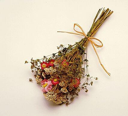 Flori cu parfum