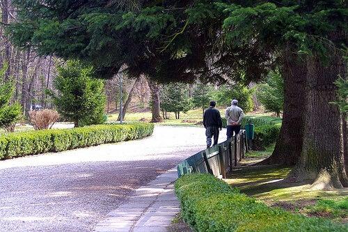 Plimbări pentru Alzheimer