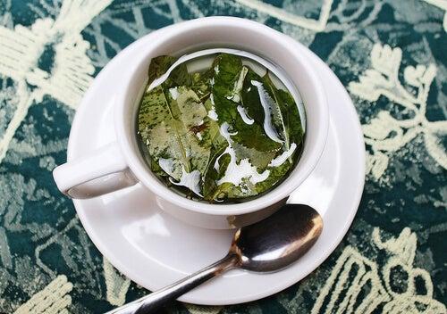 Remedii naturale pentru gingivită sub formă de ceai
