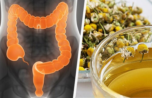 Remedii pentru colita ulcerativă precum ceaiul de mușețel