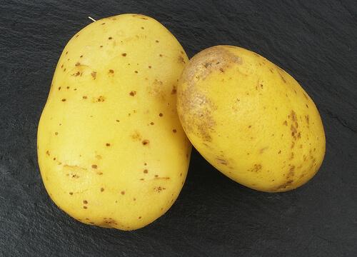 Transpirația excesivă: cartofi