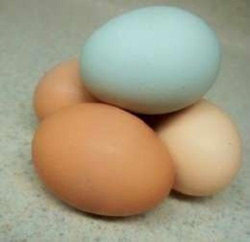 Coaja de ou