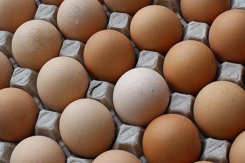 Coaja de ou: cofraj de ouă