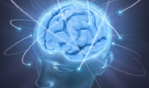 Creierul produce vise în care cădem