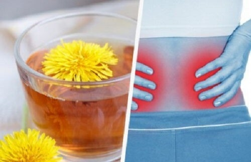 5 rețete pentru detoxificarea rinichilor