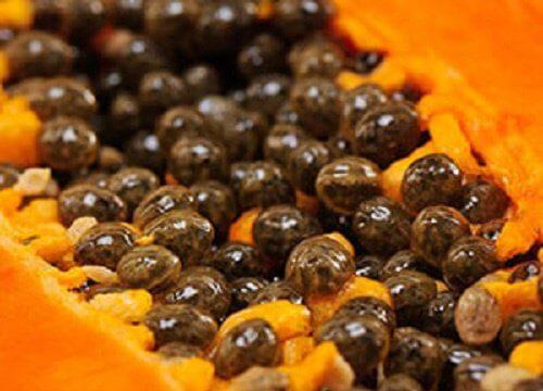 Semințe de papaya proaspătă