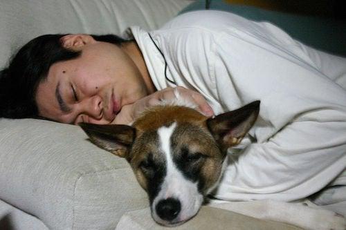 Bărbat care doarme cu un câine în brațe