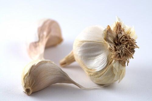 Cum să eliminăm metalele grele din corp consumând usturoi