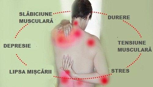 Tratamente fibromialgie și remedii naturiste