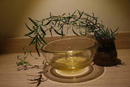 Uleiul de arbore de ceai te ajută să elimini mucegaiul