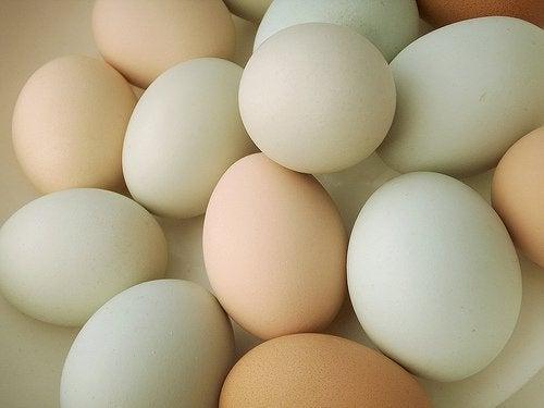 Ouă organice