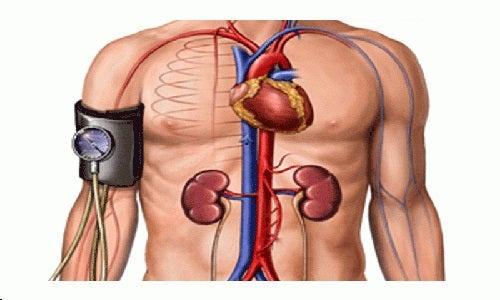 Tensiunea arterială măsurată