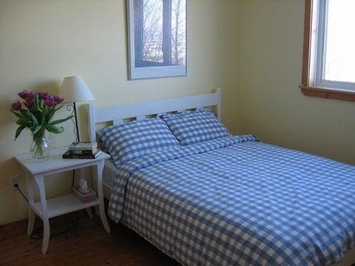 Acarienii de praf în dormitor