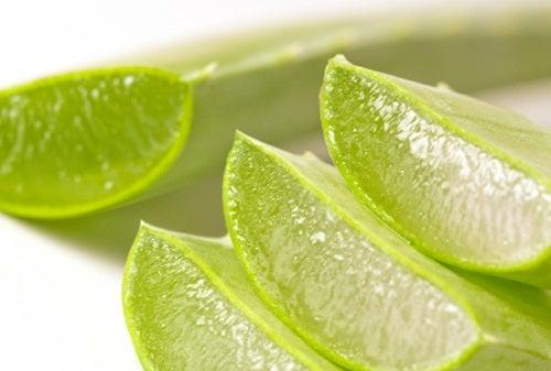 Aloe vera ne oferă energie