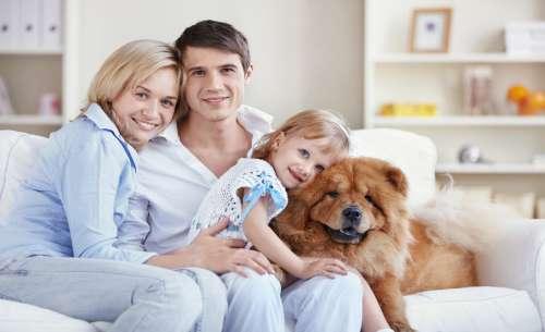 Familie de oameni de succes