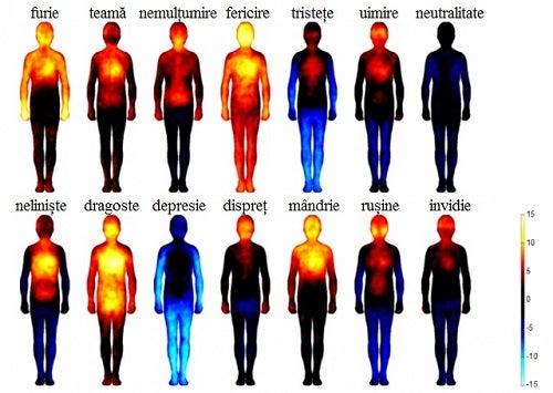 Emoțiile negative afectează sănătatea