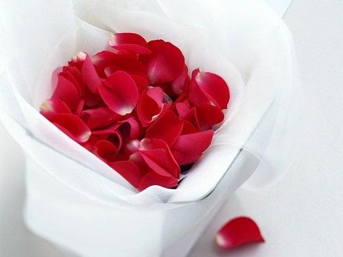 Folosește petale de trandafiri pentru cearcănele de sub ochi