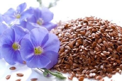 Semințele de in sunt un aliment foarte sănătos