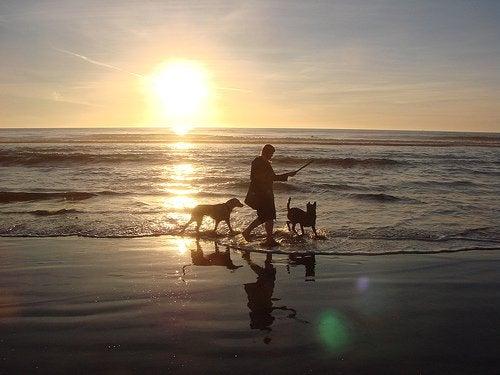 O plimbare pe plajă poate alunga tristețea