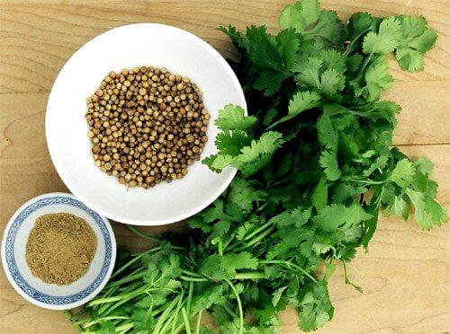 Alimente esențiale în bucătărie