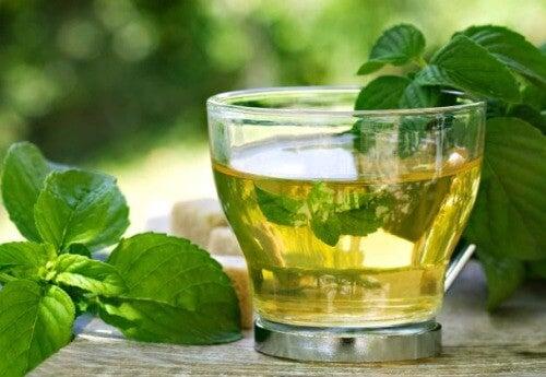 Ceaiul de boldo combăptând simptomele retenției de apă