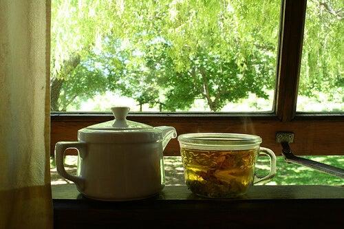 Ceaiul de mesteacăn combătând retenția de apă