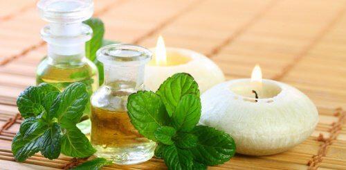Cum se prepară uleiul de mentă acasă
