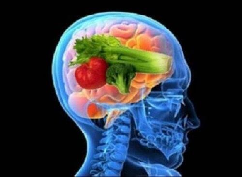 Dieta pentru creier și beneficiile ei