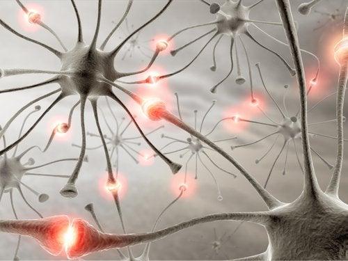 Un somn odihnitor este esențial pentru a avea creierul sănătos