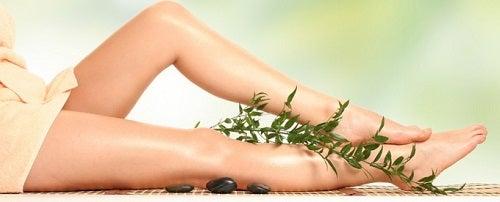 Rozmarinul stimulează circulația la nivelul picioarelor