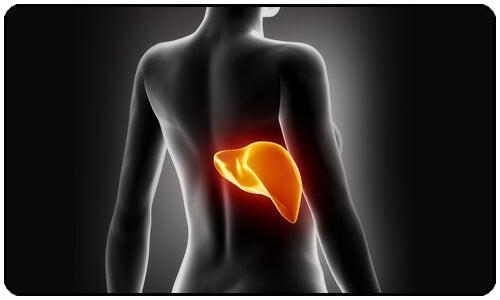 7 semne că ficatul tău este intoxicat