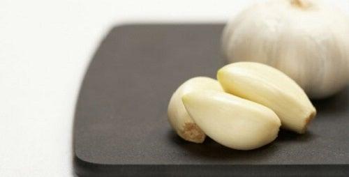 Căței de usturoi