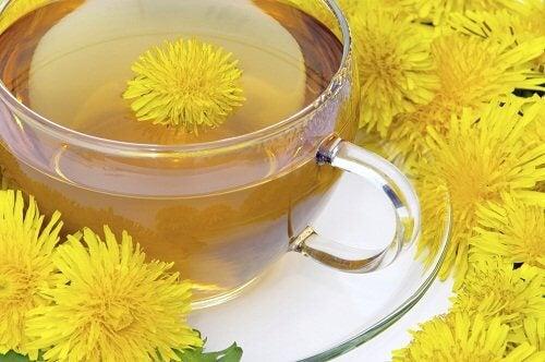 Ceaiul de păpădie este una dintre cele mai eficiente băuturi detoxifiante pentru slăbit